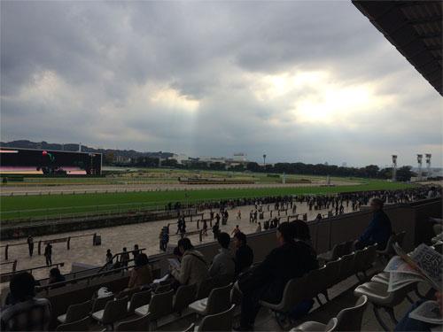 東京競馬場 ガラガラのスタンド