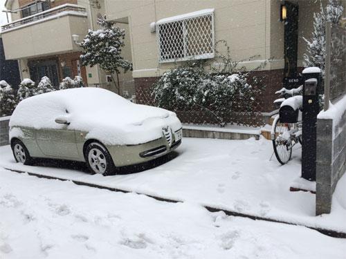 雪化粧したアルファ