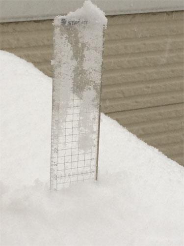 積雪19センチ