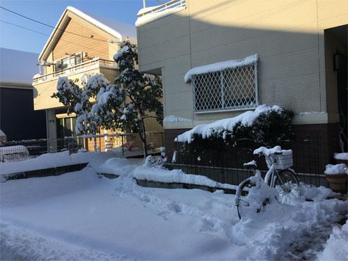 1月22日は大雪