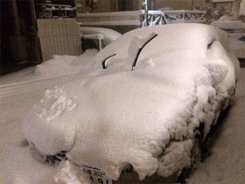 雪に埋もれたアルファ